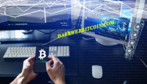 dark web bitcoin - 033